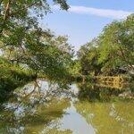 Cần bán đất 250 ha đất tp hòa bình, du lịch sinh thái hoặc làm trang trại, 27 tỷ.