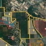 Bán 1142M2 Đất Nông Nghiệp, View Hồ Sinh Thái Xã Lộc An, Huyện Long Thành