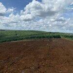 đất đẹp bảo lộc 500m2 chỉ hơn 600 triệu