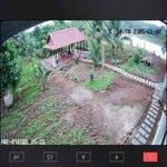 Siêu Phẩm Nhà Vườn View Hồ Tự Nhiên Giáp Tp.bmt