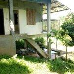 Cần Bán Trang Trại Nhà Vườn 3634M2,Vườn Cây,Ao Cá,View Núi Đá, Cánh Đồng Giá Hơn Triệu