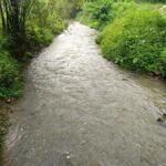 Bán đất 12.000m có 400 đất ở bám suối tại Lương Sơn giá hơn 4 tỷ