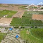Bán đất xã Hồng Thái 12353m2 mặt tiền dường đất giá 1 tỷ 420 triệu