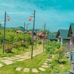 BÁN GẤP 5065m2 trung tâm TT nông trường Mộc Châu, có sổ đỏ GIÁ RẺ