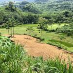 Lô đất rẻ đẹp với diện tích 3500m2 có 400 thổ cư, giá hấp dẫn cho nhà đầu tư.