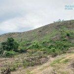 Cần bán gấp 3,5 ha đất rừng sản xuất tại huyện kỳ sơn tp hòa bình