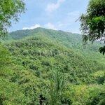 Bán đất kim bôidiện tích10 ha giá rẻ làm sinh thái