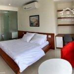 Cho thuê căn hộ 1 ngủ trung tâm thành phố