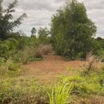 Chính chủ cần bán đất mặt tiền đường nhựa tại huyện cư jút, tỉnh đắk nông