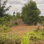 Bán đất mặt tiền đường nhựa tại huyện cư jút