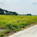Bán đất vườn xã tân phú trung củ chi, dt: 10x53m.