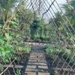 Farmstay đá garden mảnh đất đầu tư tiềm năng sinh lời cao trong tương lai