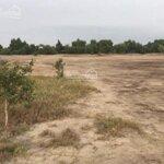 Bán thanh khoản 3 hecta đất công nghiệp tại đồng than - yên mỹ, giá chỉ 1,8 triệu/m2 bao san lấp