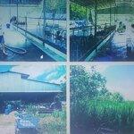 Cho thuê trang trại(kho) đường 762 -xã an nhơn tây