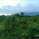 đất huyện kim bôi 8000m²