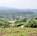 Cần bân lô đất 40ha rsx tại xã phú cường tân lạc hòa bình