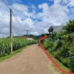 Bán đất tân lạc 1800m tặng nhà sàn, vườn bưởi giá 450tr