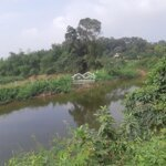 Bấn Gấp Mảnh Đất Siêu Đẹp Trục Chính Liên Huyện Giá 850 Triệu