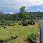 Đất Huyện Bảo Lâm 92M² Sổ Đỏ Thổ Cư 100%