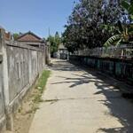 Bán đất Phú Mậu – Gần ủy ban nhân dân phú Mậu.