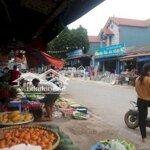Bán Đất Tại Thanh Trí Minh Phú Sóc Sơn Giá Đầu Tư