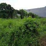 Cho thuê đất nông nghiệp trồng cây ,chăn nuôi