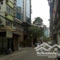Bán nhà Phân lô Phan Kế Bính, ô tô qua nhà, chỉ 53 tỷ LH: 0966569786