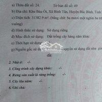 Chính chủ bán 31,3829 m2 đất trông cây Khu Bàu Ôi, xã Bình Tân, Huyện Bắc Bình, Bình Thuận LH: 0909936867