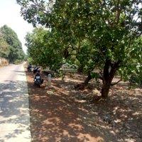 Cần bán lô đất mặt tiền đường bê tông liên xã, Túc Trưng, Định Quán, Đồng Nai LH: 0389755187