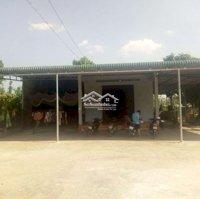 Bán căn nhà vườn tránh mùa dịch ngay thị trấn LH: 0708471529