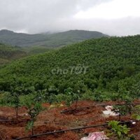 Cần bán đất nghỉ dưỡng ven hồ đảo chiếm 23 LH: 0988134369