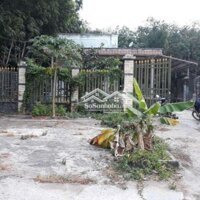 Đá gà đổ nợ cần bán miếng đất 14 70 LH: 0984559118