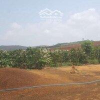 Cần bán 2,7 hecta đất nông nghiệp xã Tahine LH: 0975340413