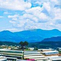 ho thuê 3000m2 Đất làm cafe homestay, mô hình du lịch, View thung lũng, săn mây cực Chất LH: 0902528740