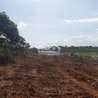 Đất nền nghỉ dưỡng gần trường học giáp Đà Lạt LH: 0367337265