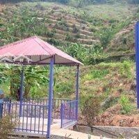 Nhà chính chủ cần bán tại thôn 9 mê linh- lâm đông LH: 0934374491