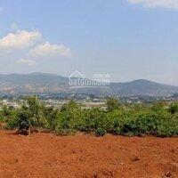 Chỉ 600tr sở hữu ngay lô đất 16m mặt đường betong Trung Tâm Thị Trấn Nam Ban Cách Đà Lạt 20km LH: 0971949949