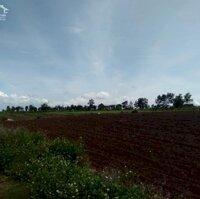 Cần bán đất view đẹp,đất bằng phẳng LH: 0972660479