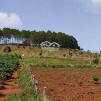 Cần bán 8724m2 đất nghỉ dưỡng view cực đẹp- Mê Linh Nam Ban Giáp Đà Lạt LH: 0971949949