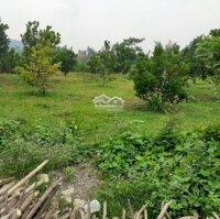 Cơ hội sở ngay lô đất thổ cư view đồng quê tuyệt đẹp tại Kim Bôi, Hòa Bình LH: 0988233101