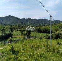 Bán gấp 2,2Ha đất thổ cư nhà vườn ở Kim Bôi-HB, sẵn nhà, có ao, có cây ăn quả LH: 0977265261