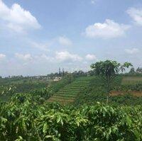 Đất nghỉ dưỡng Lộc Thanh 3.900m² LH: 0971654439