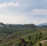 Đất làm trang trại nghỉ dưỡng ngoại ô Đà Lạt LH: 0913844116