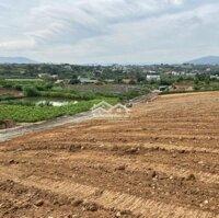 Đất nền nghỉ dưỡng Eco View - Gia Lâm, có sổ riêng LH: 0902796016