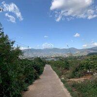 Đất nền xây biệt thự nghỉ dưỡng gần Đà Lạt ,khí hậu mát mẻ ôn hòa LH: 0367337265