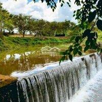 Bán 7,3 Hecta Nông Trại Nghỉ Dưỡng, Có Suối đẹp LH: 0378083801