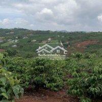 Đất TT Nam Ban View toàn TT LH: 0908281393