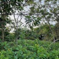 Đất Lương Sơn 2 mặt tiền chỉ hơn triệum2 LH: 0969429304