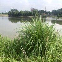 5500m2 bám mặt hồ có sẵn nhà cấp 4 tại hoà Sơn,lương Sơn,hoà bình,phù hợp làm nhà vườn nghỉ dưỡng LH: 0982567995