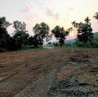 Chính chủ cần bán 2877m 800m đất ở Tai xóm dong tranh xã nhuận trạch Lương sơn hòa bình LH: 0918244657